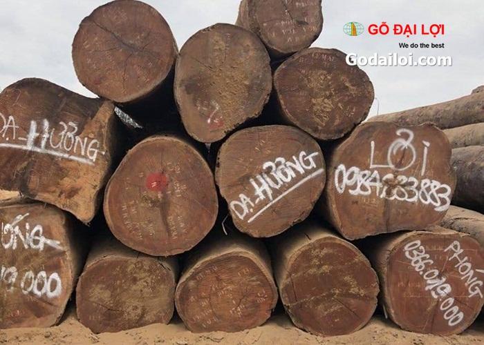 gỗ-dạ-hương (4)