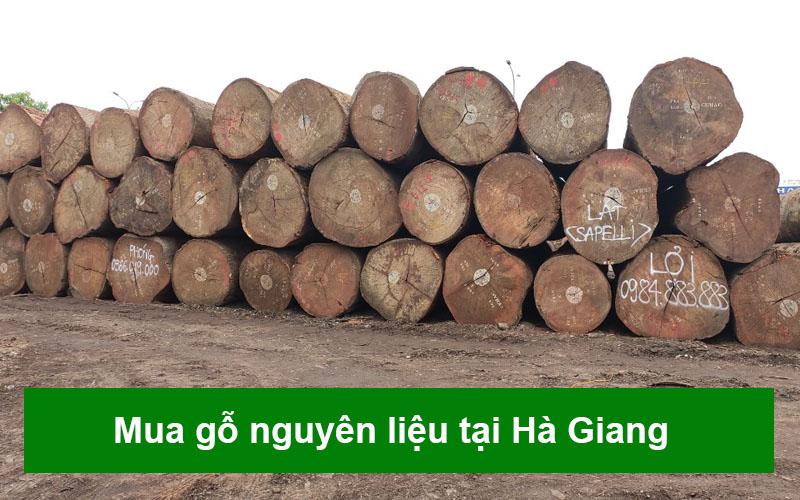 go-nguyen-lieu-tai-ha-giang