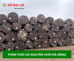 PHAN-PHOI-GO-DA-NANG