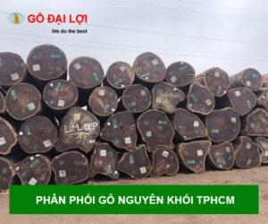 go-nguyen-khoi-tphcm